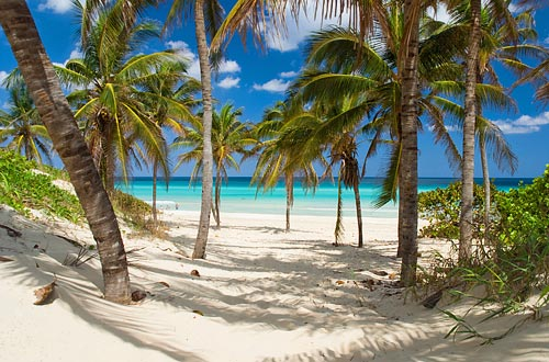 Image of cuban beach for study and travel courses to Cuba