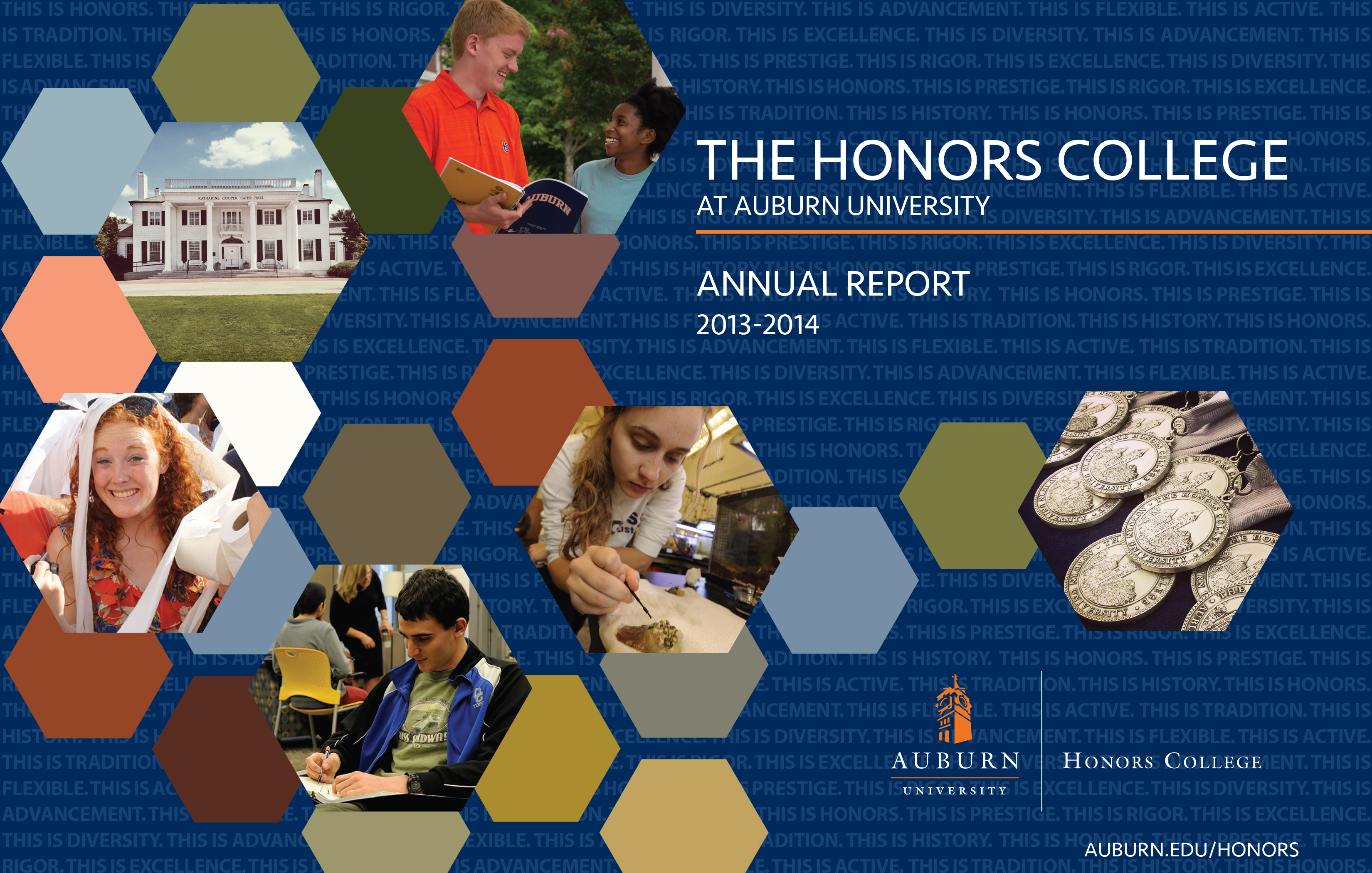 Cover of the 2013-2014 Annual Report